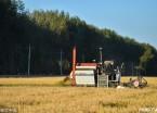 双鸭山:农垦区迎来水稻丰收