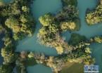 杭州:西溪秋色