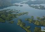 秀美太平湖(组图)