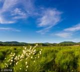 黑龙江双鸭山饶河湿地美景怡人