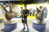 立威廉带自家小公举看恐龙展