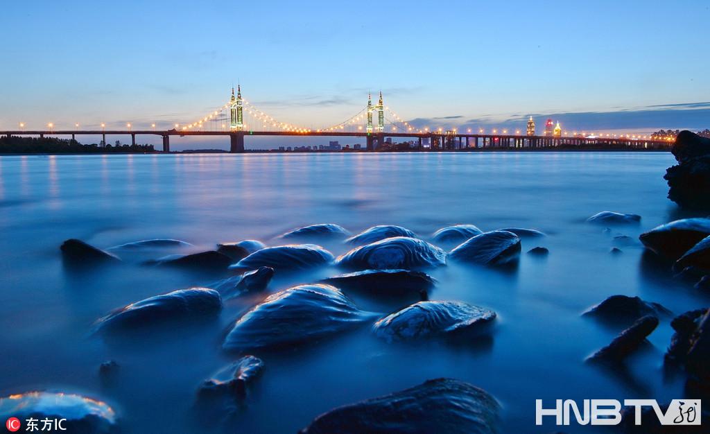 江水回落 哈尔滨松花江边堆满河蚌
