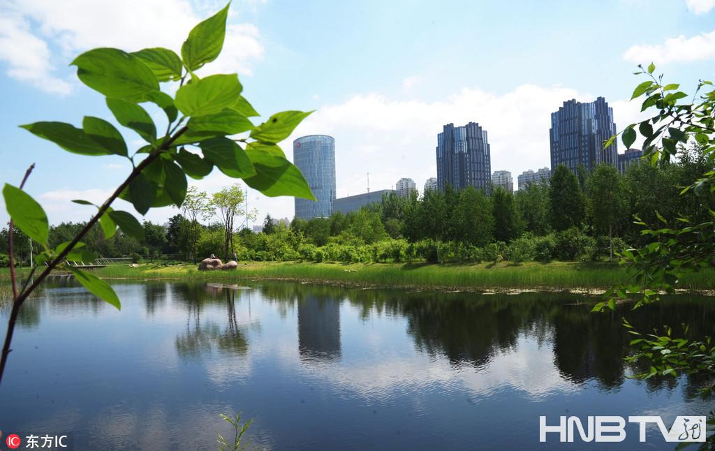 哈尔滨百里生态长廊现壮丽景色 展现迷人魅力