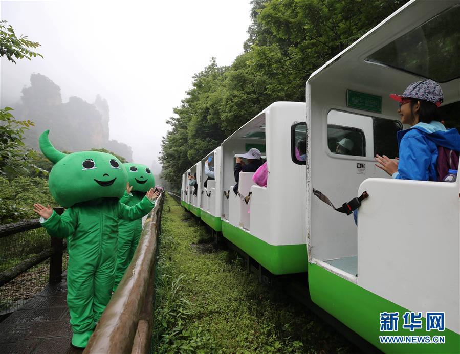 爱护环境 倡导绿色生活