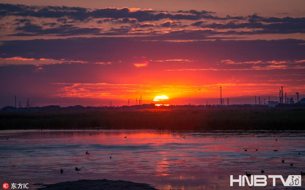 大庆龙凤湿地落日醉人 呈现自然和谐之美