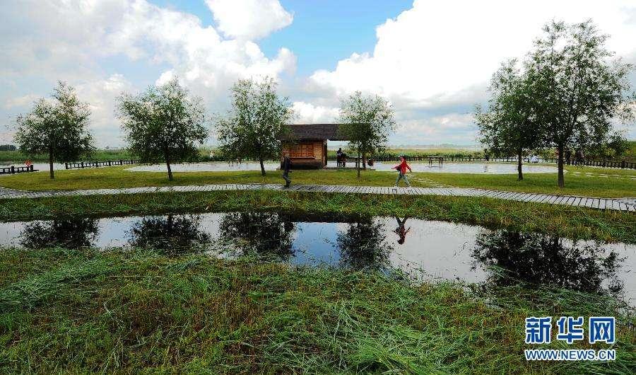 初秋,与你相约湿地公园