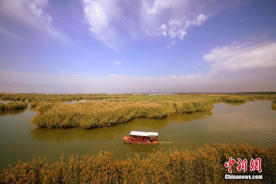 """""""塞上明珠""""宁夏沙湖吸引游客"""