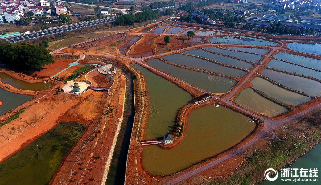 武義新建生態濕地公園
