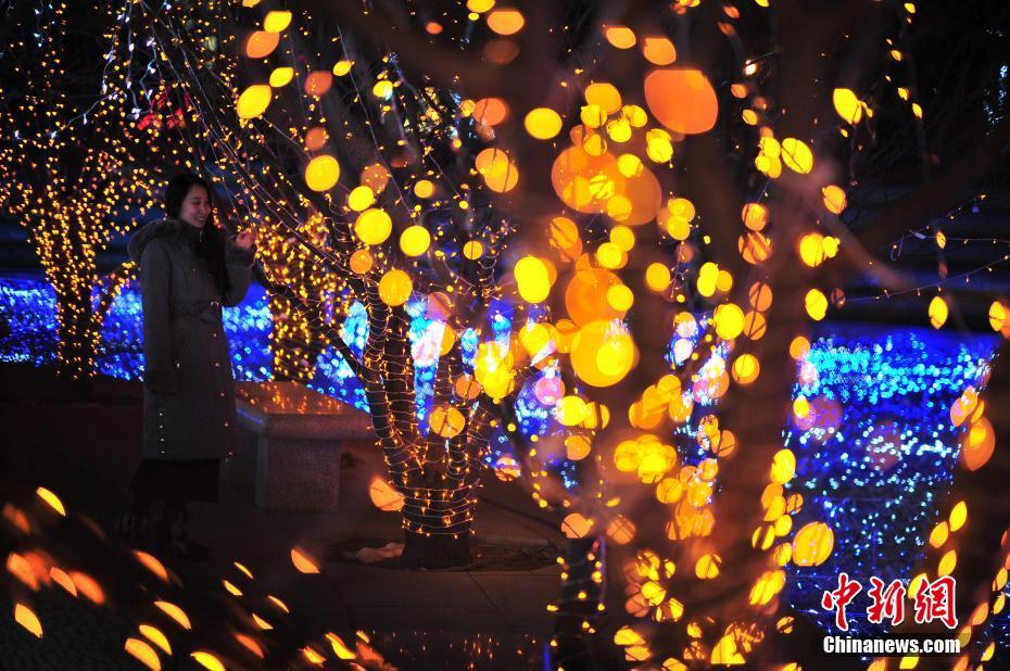 天津泰达灯光节开幕