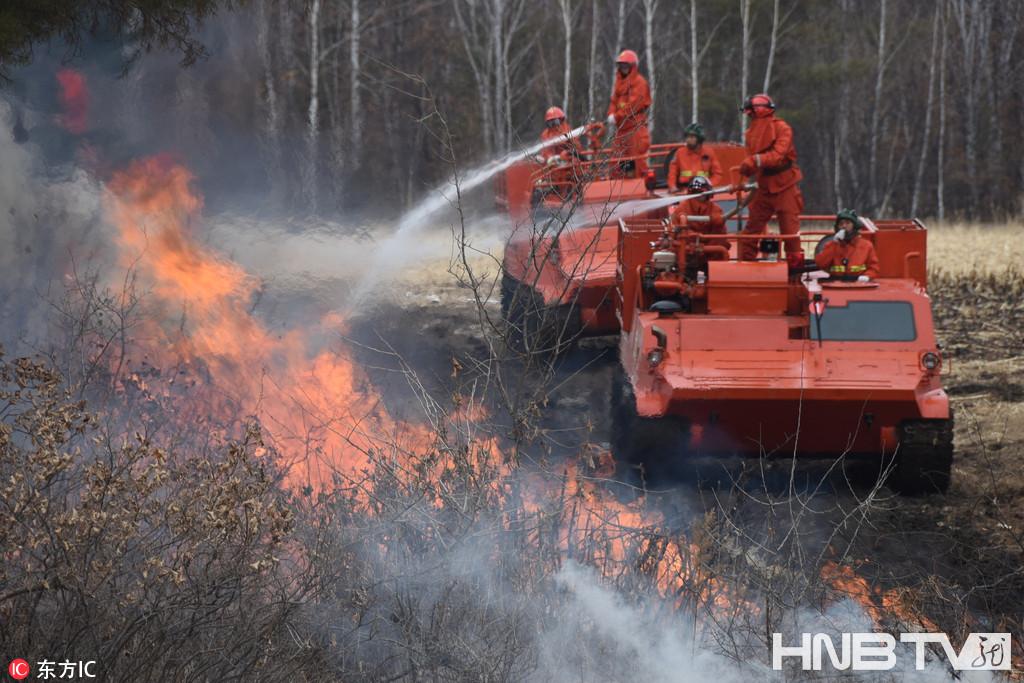 黑河森林灭火实战化训练(组图)
