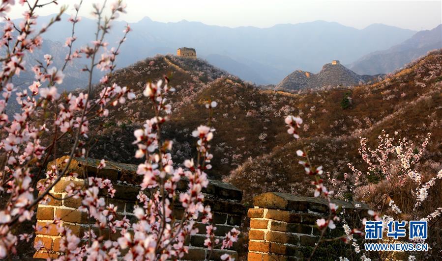 春到古长城