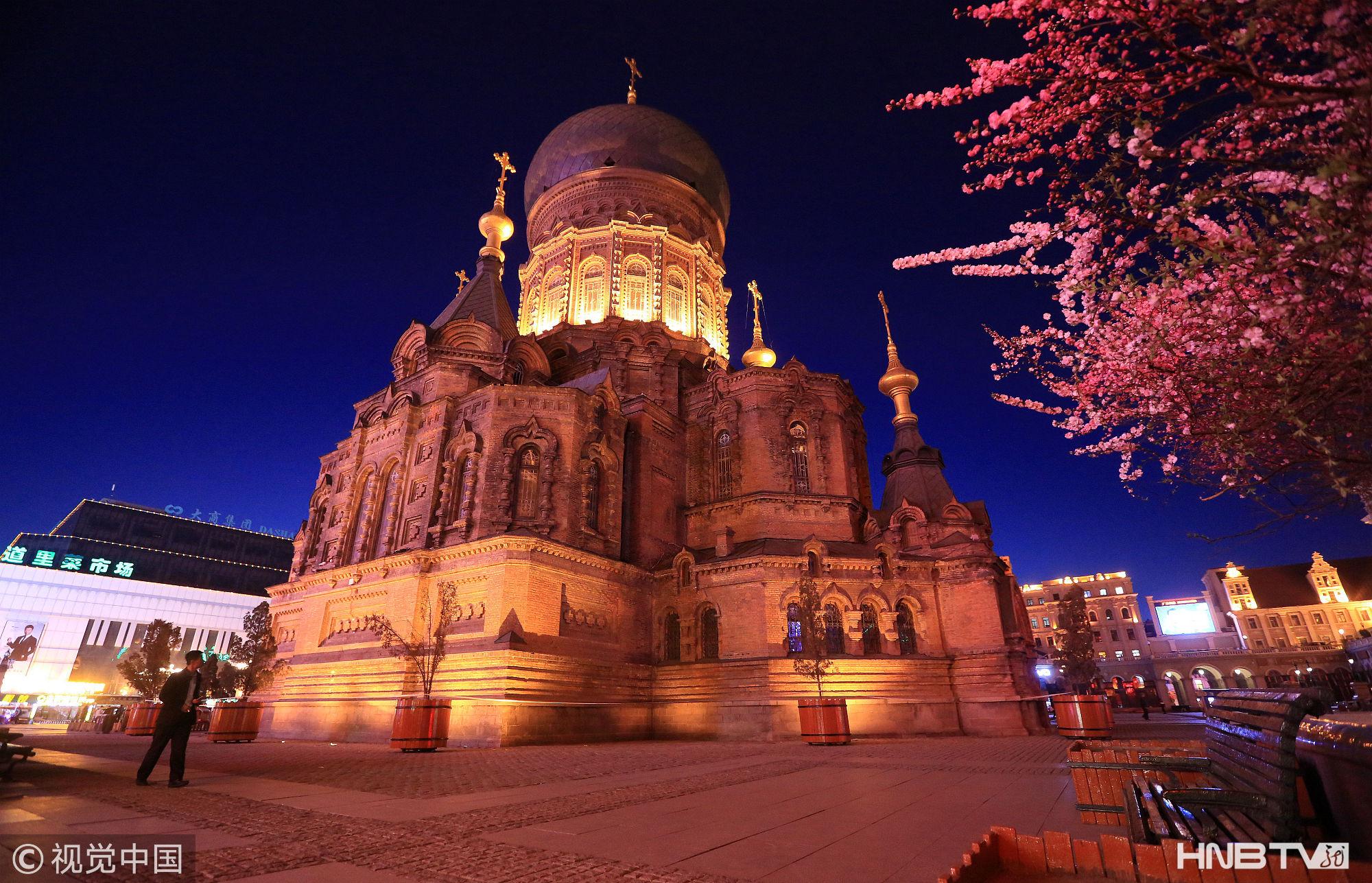 哈尔滨榆叶梅花开 索菲亚教堂夜色迷人(组图)