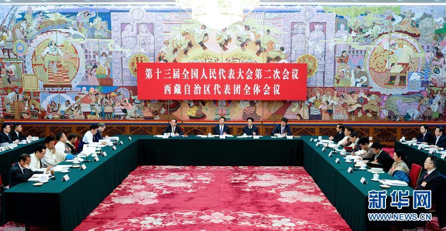 西藏代表团全体会议向媒体开放