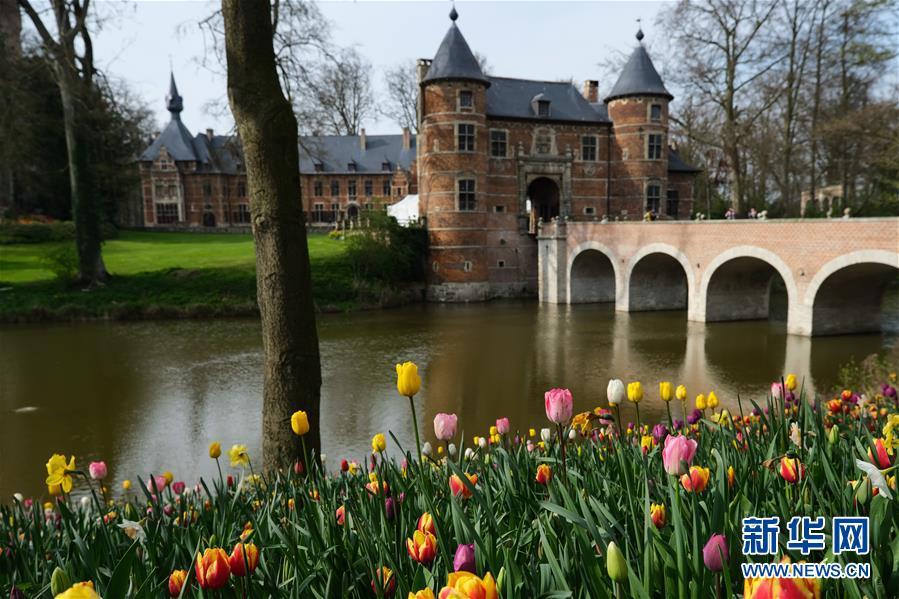 世界园林巡礼——比利时拜加登城堡