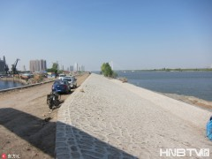 黑龙江哈尔滨:江堤改线 去道外江畔湿地无需再绕道