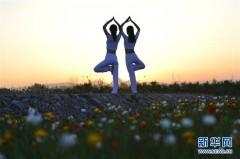品花香 练瑜伽
