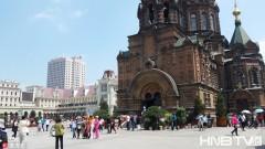 夏天到了!南方游客纷纷前往北方哈尔滨避暑