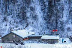 探访冬日最美雪乡 黑龙江双峰林场诗情画意宛如童话世界