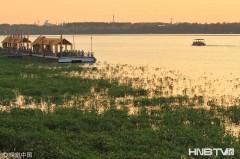 哈尔滨:松花江水一天上涨0.15米 百米草滩成鱼塘