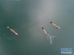 """千岛湖开渔展现""""水清鱼欢""""美丽生态"""