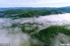 航拍大兴安岭原始森林茫茫云海