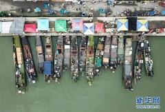 湖州太湖渔民迎丰收