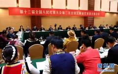 云南代表团全体会议向媒体开放
