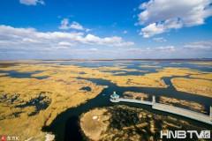 俯瞰黑龙江大庆龙凤湿地 蓝天白云淡水沼泽好壮美