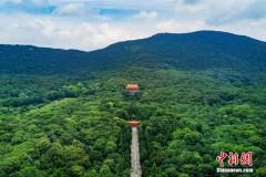 世界文化遗产南京明孝陵 尽显一代帝王威武气势