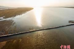 鄱阳湖水位下降 千眼桥大修后首次露出水面