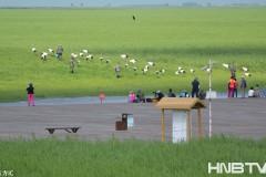 """黑龙江齐齐哈尔:生态秀美引""""客""""来"""