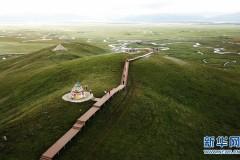 甘肃玛曲:高原盛夏湿地美