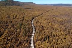 黑龙江大兴安岭:航拍森林秋色 一片金黄美丽动人