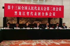 黑龙江代表团全体会议向媒体开放(组图四)