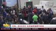 日本:近2亿日元 东京金枪鱼新年首拍